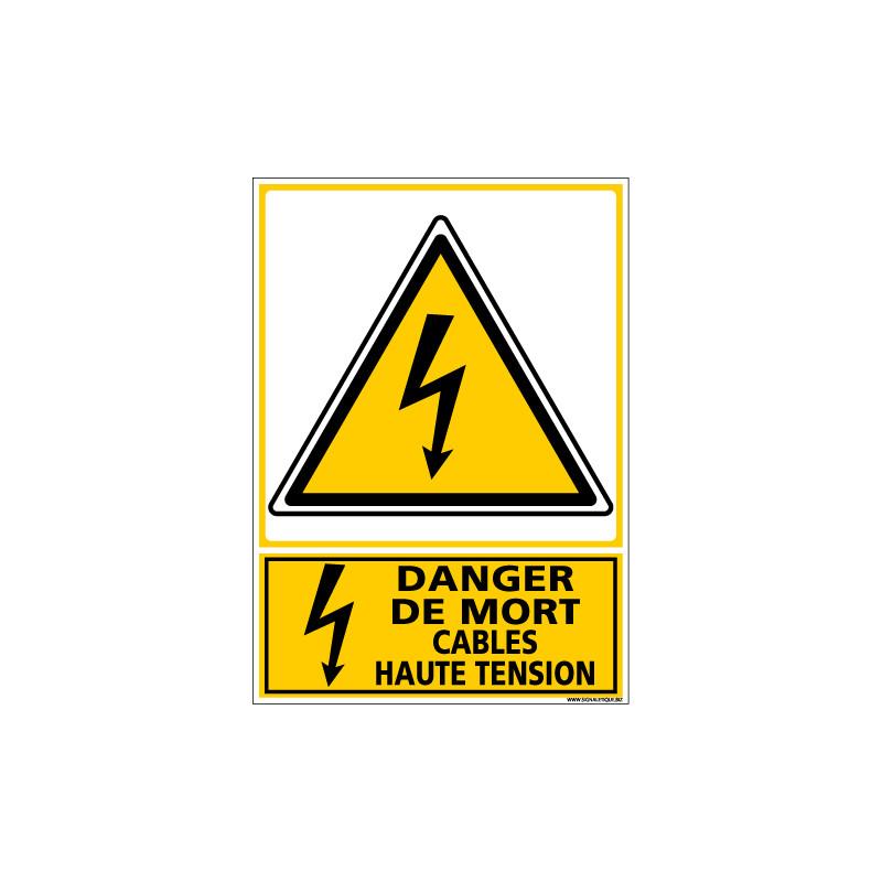 Signalisation danger electrique (C1352)