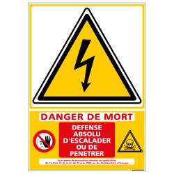 Signalisation danger electrique (C1356)