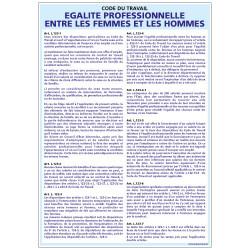 Panneau EGALITE PROFESSIONNELLE ENTRE HOMME ET FEMME (A0309)