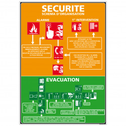 Panneau SECURITE - SCHEMA D'ORGANISATION (A0317)