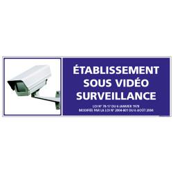 ETABLISSEMENT SOUS VIDEO SURVEILLANCE (G0848)