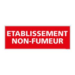 Panneau ETABLISSEMENT NON FUMEUR (D0113)