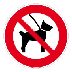Panneau Interdit aux chiens (D1027)