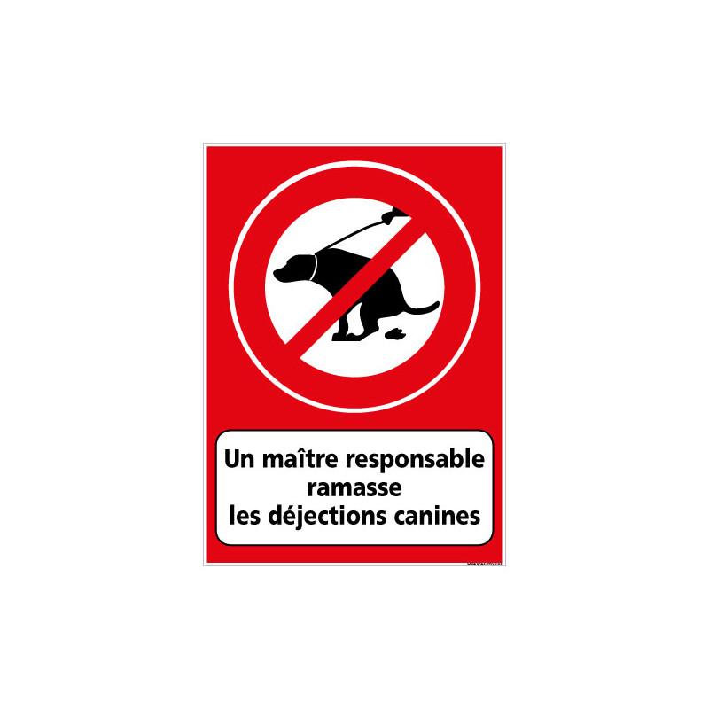 PANNEAU UN MAŒTRE RESPONSABLE RAMASSE LES DEJECTIONS CANINES (D1131)