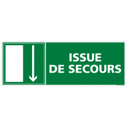 PANNEAU SORTIE ISSUE DE SECOURS (BAS) (B0138)