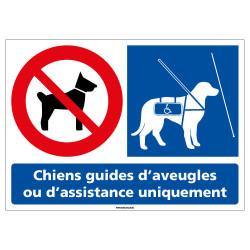 Panneau Chiens interdits sauf Chiens guides d'aveugles (L0952)