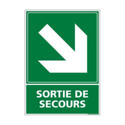 PANNEAU EVACUTION/SORTIE DE SECOURS (BAS DROITE) (B0242)