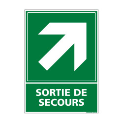PANNEAU EVACUATION/SORTIE DE SECOURS (HAUT DROITE) (B0247)