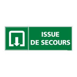 Panneauevacuation/secours Issue de secours (B0342)