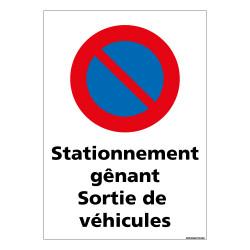 PANNEAU STATIONNEMENT GNANT SORTIE DE VEHICULE (L0726)