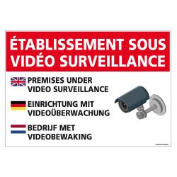 PANNEAU ETABLISSEMENT SOUS VIDEO SURVEILLANCE (H0309)