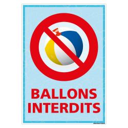 PANNEAU BALLONS INTERDITS (H0472)
