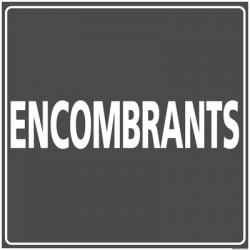 Panneau ENCOMBRANTS (I0838)