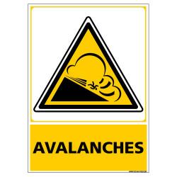 PANNEAU DANGER AVALANCHES (C1443)