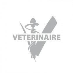 Adhésif sablé vétérinaire