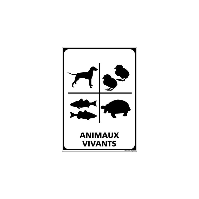 Adhésif de Signalisation CONDITIONNEMENT : ANIMAUX VIVANTS (M0311)