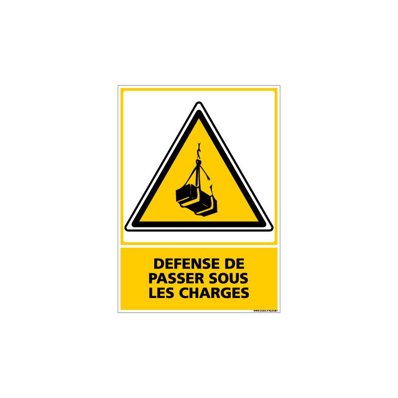 Panneau DEFENSE DE PASSER SOUS LES CHARGES (C0628)