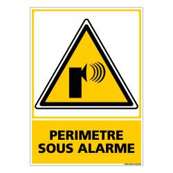 Panneau PERIMETRE SOUS ALARME (C0658)