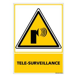 Panneau TELE-SURVEILLANCE (C0687)