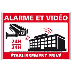PANNEAU ALARME ET VIDEO 24H/24 - ETABLISSEMENT PRIVE (G1539)