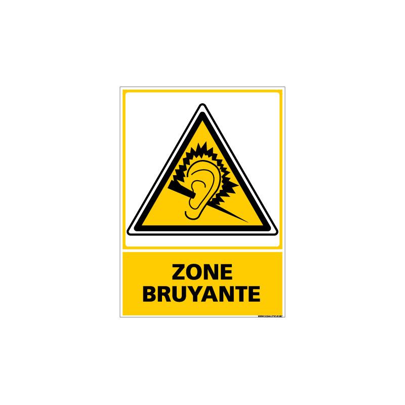 Panneau ZONE BRUYANTE (C0695)